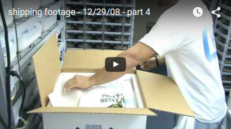 Shipping footage � 12/29/08 � Part 4